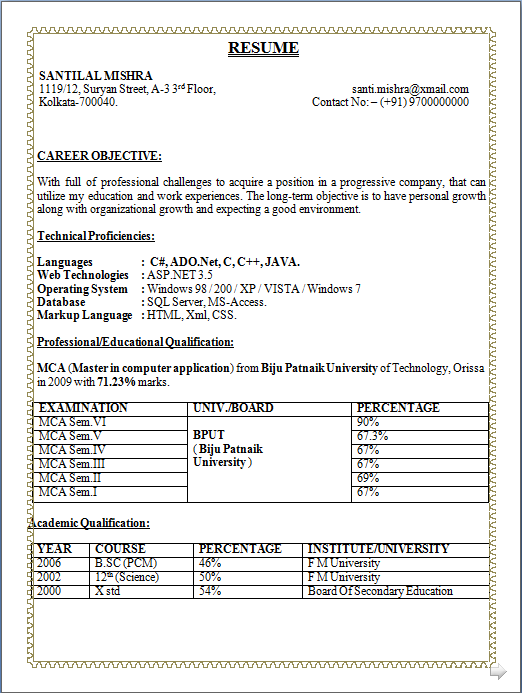 Mba Hr Resume Download  template    free samples examples format