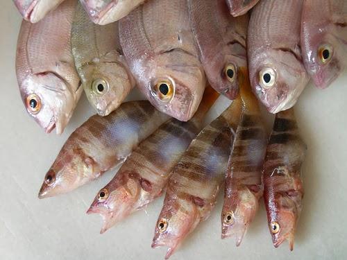 Tabla de calorías-pescados