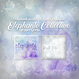 //Elephante Collective//