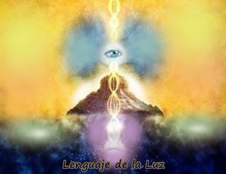 En la Nueva Tierra tenemos un acuerdo que cada vez que aparece un nuevo Ser le ofrecemos ayuda, para nosotros es maravilloso comunicarnos con el Lenguaje de la Luz con todas las formas de vida.