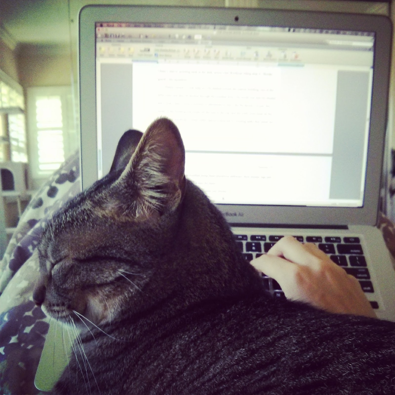 NOW AVAILABLE FOR DOWNLOAD see description  MEME REMIXES  Yass Cat House Mix