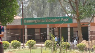 Bannerghata National Park