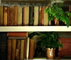 La pagina dei libri