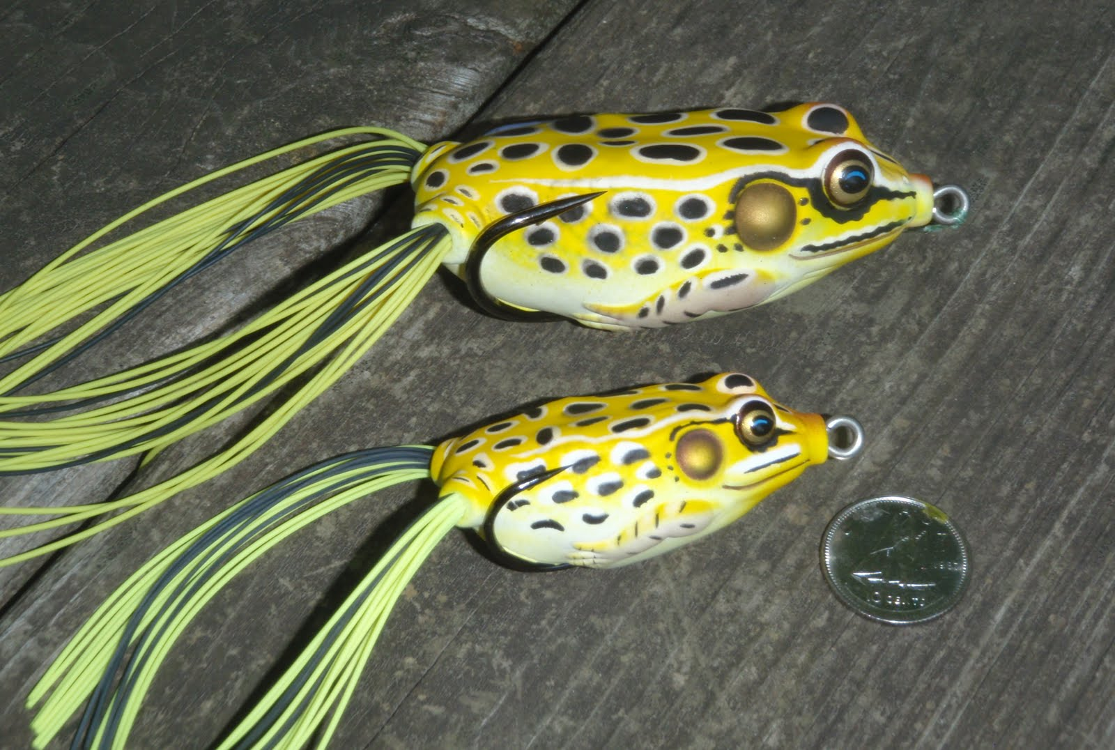 Bass junkies fishing addiction frog review koppers live for Frogs for fishing