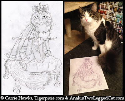 Anakin The Two Legged Cat Sketch by Carrie Hawks Tigerpixie.com