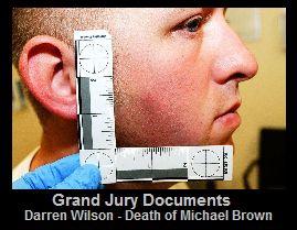 Darren Wilson  Grand Jury Documents