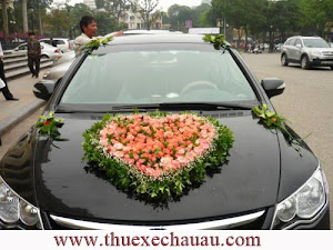 Hoa xe cưới MS012