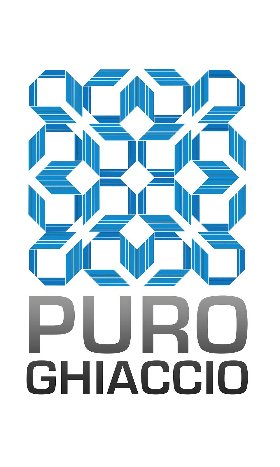 PuroGhiaccio Service s.r.l.s.