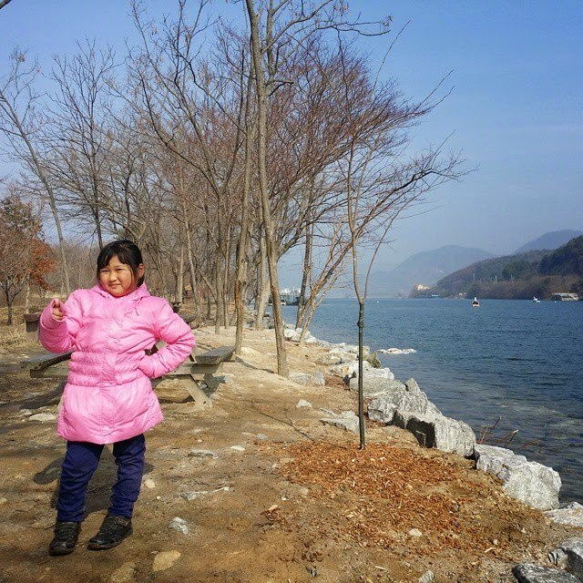 Nami Island,Korea 2015