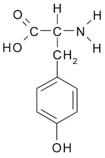 l-tirosina formula estrutural