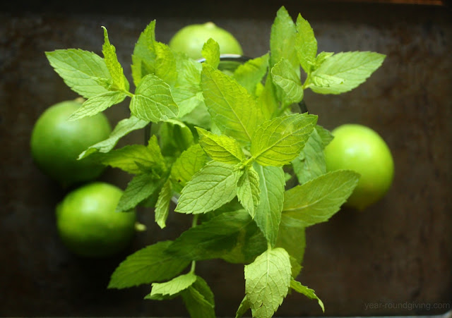 Mint and limes