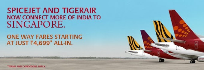 Ahmedabad to Singapore with Spicejet & TigerAir Connectivity @ 4699/-*