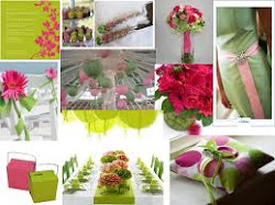 Reception Theme       (White,pink & green)