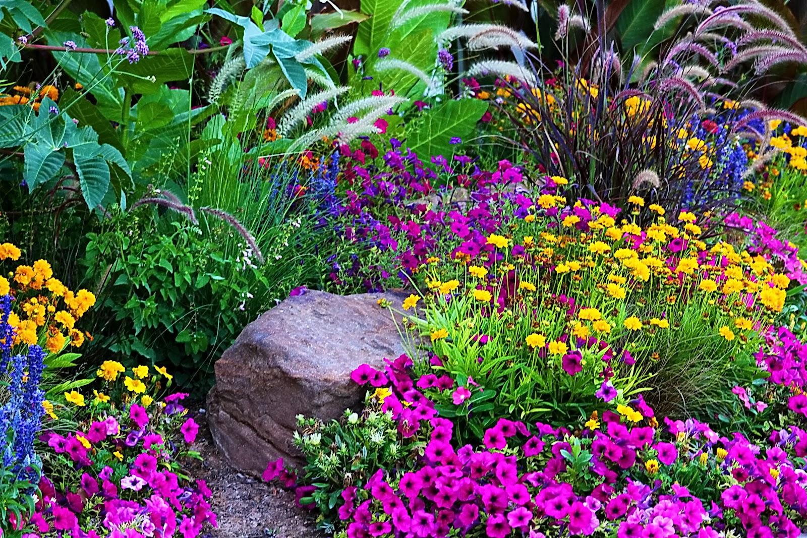 Penrose Mornings Blood Family Blog A Flower Garden For Louises