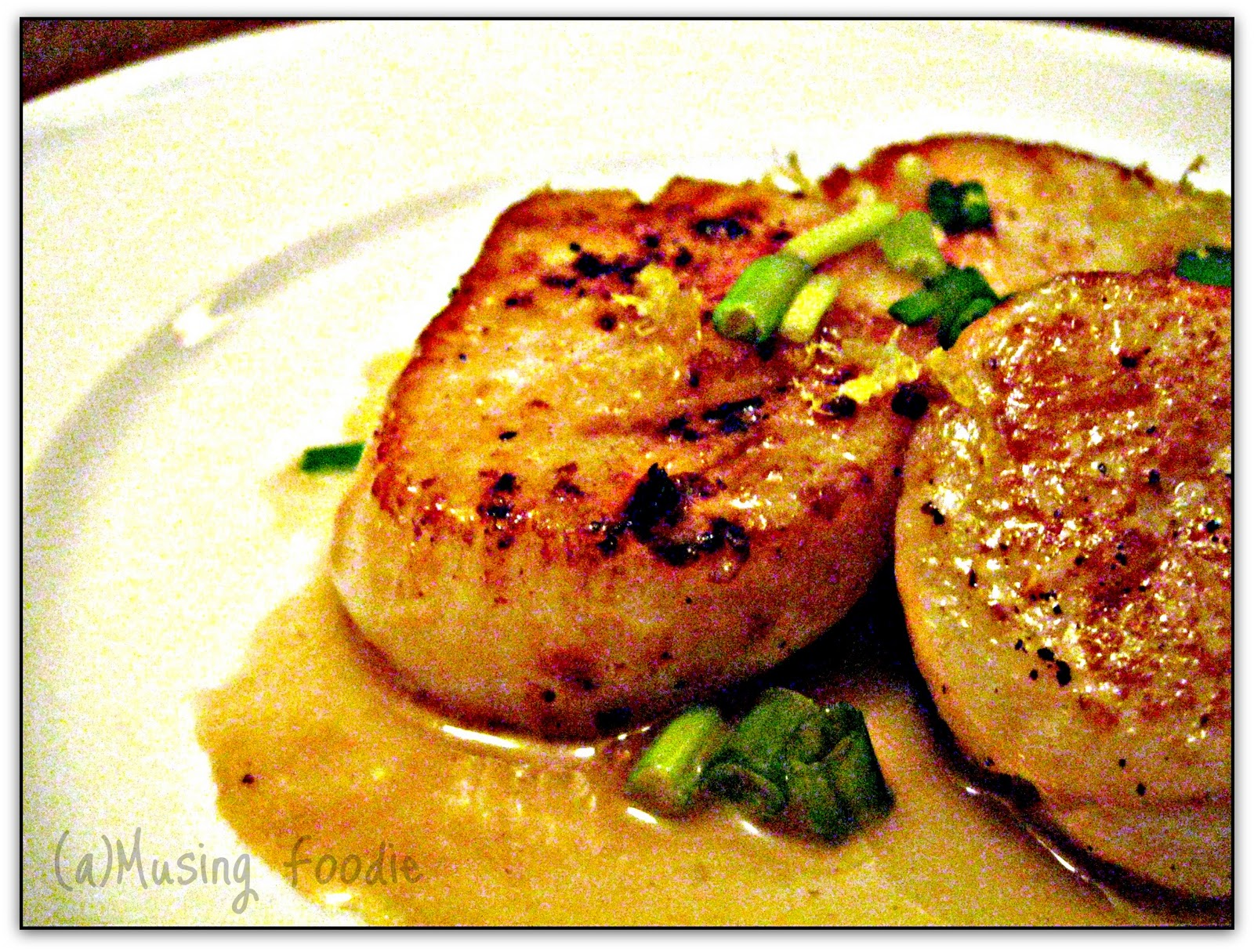 Seared Scallops, scallop recipes