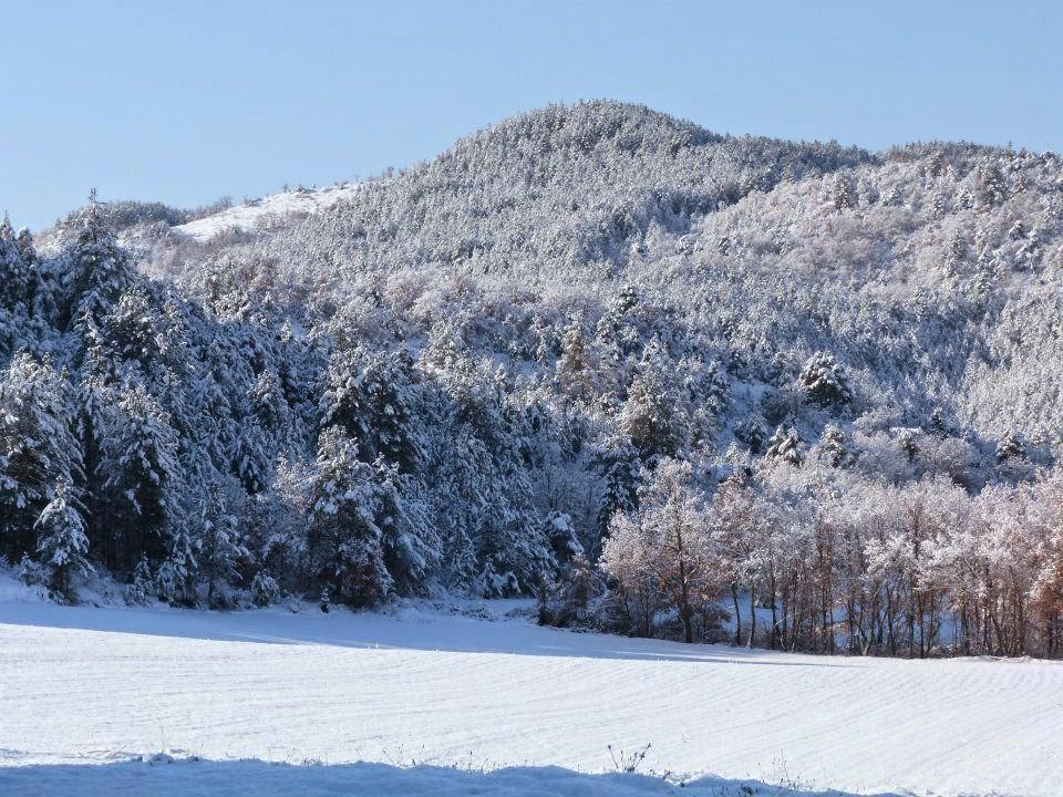 neige, cousson, hautes alpes, montagne, alpes de haute provence, gel