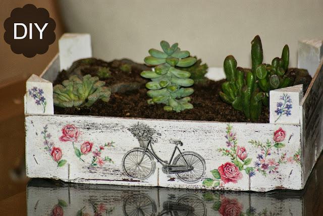 Reciclaje caja de fruta diy jard n de crasas manualidades for Reciclaje para jardin