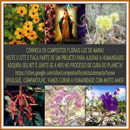 LUZ DE MARIA - COMPOSTOS FLORAIS