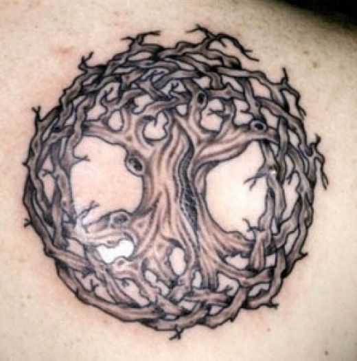 Celtic Tree of Life Meaning The Celts of ancient times believed that ...