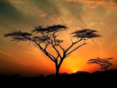 paisajes naturaleza 28 Imagenes de lugares paradisiacos.