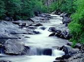 ROW (pela conservação dos rios mundiais, conservation of world rivers)