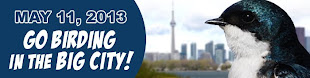 Tommy Thompson Park Spring Bird Festival