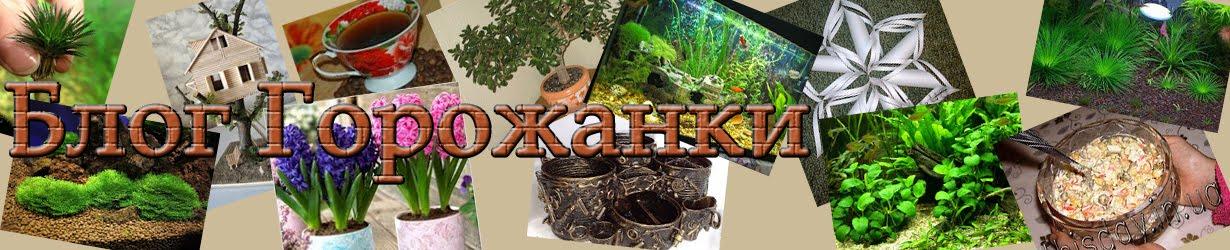 thisday.in.ua - Блог Горожанки