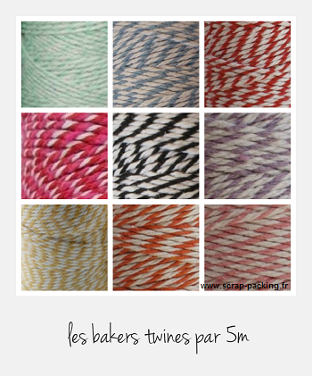 Air Mail baker twine couleur par 5m