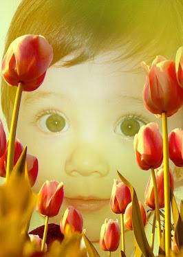 Entre flores