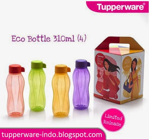 Eco Bottle 310ml (4)