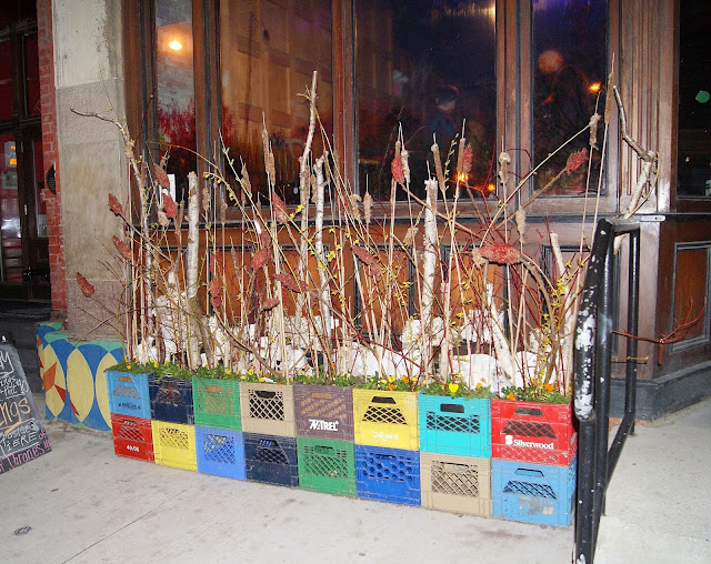 Grow Op 2015 Art and Landscape Exhibition at Gladstone Hotel in Toronto, west queen street, culture, artmatters, exhibit, enviroment, ontario, the purple scarf, earth day, melanie.ps, trees, plants, urban, contemporary, wild crate, deena delzotto, rachel kimel, bowery project