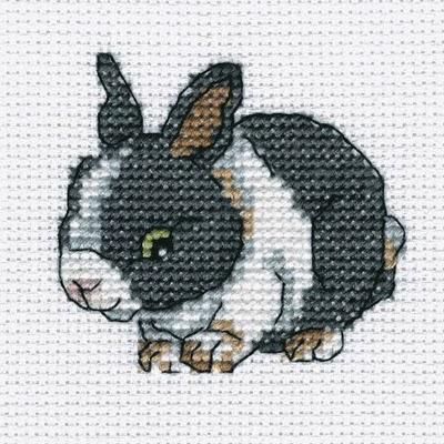RTO, Атласный кролик