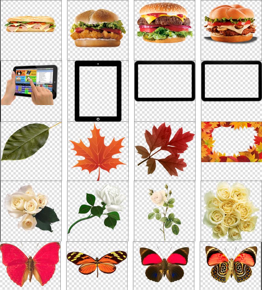 موقع للحصول على صور بخلفيات شفافة