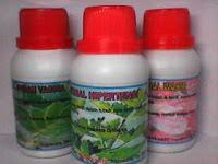 herbal pembesar payudara