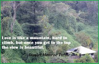 love and mountain comparison quote