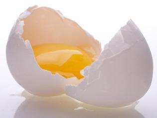 Khasiat Telur Ayam Kampung Bagi Kesehatan Khasiat Telur Ayam Kampung Bagi Kesehatan