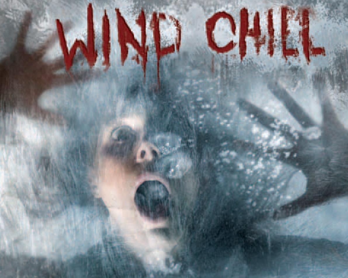 Windchill DvD