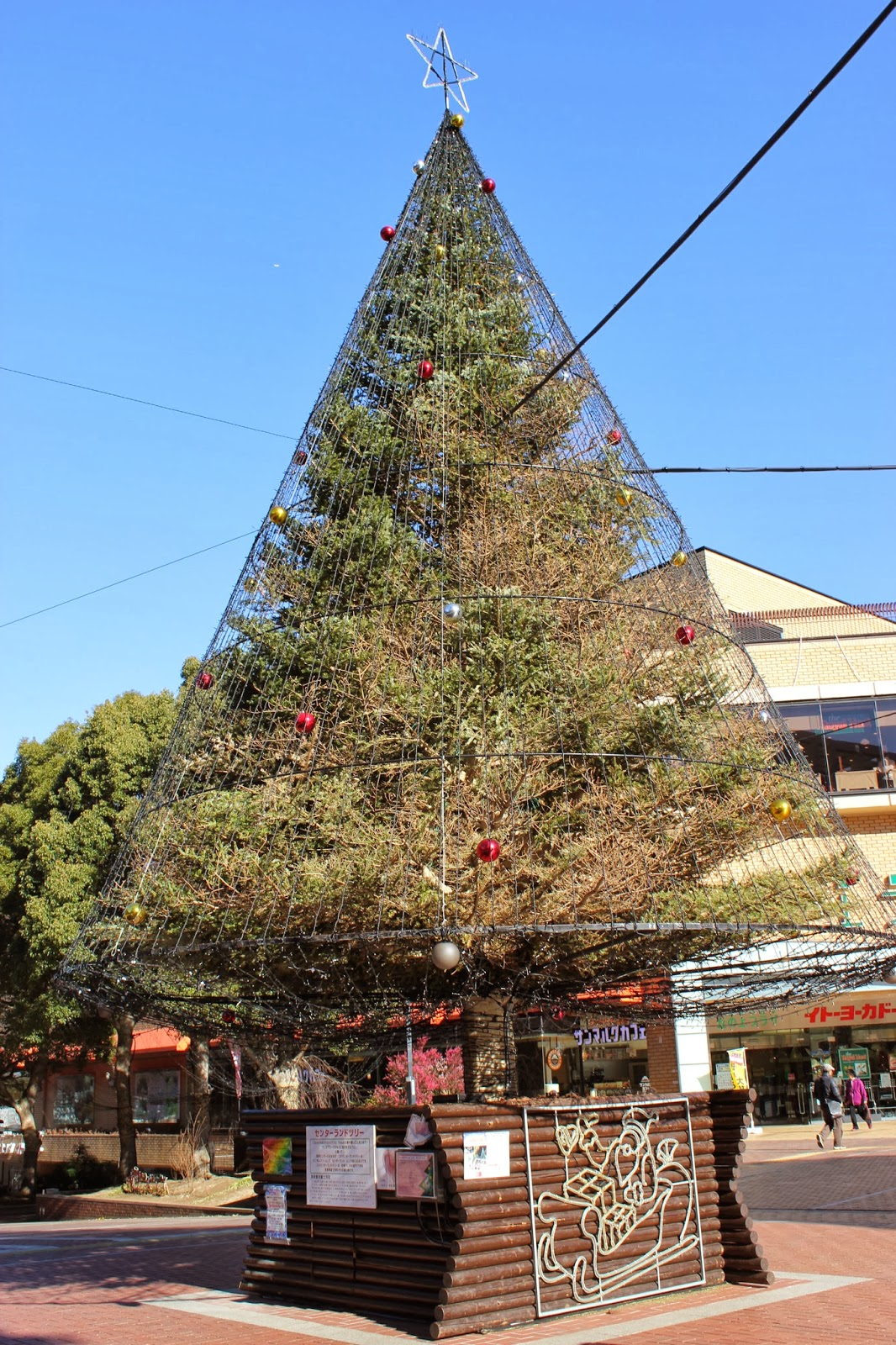 Christmas Tree Japan