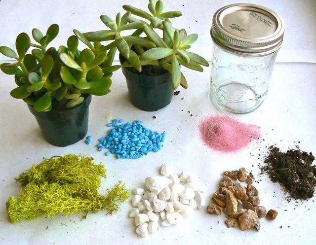 The Art Pantry Holiday Diy Gift Succulent Terrarium