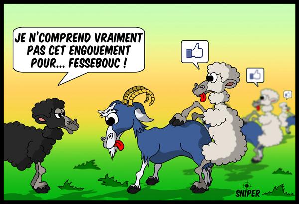 Cartoon plein facebook ou la vie d 39 un mouton - Image mouton humoristique ...