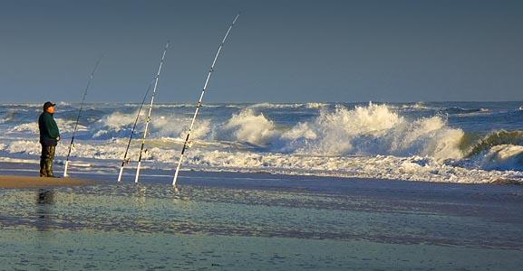 Carolina beach surf fishing pier fishing for Kure beach fishing report