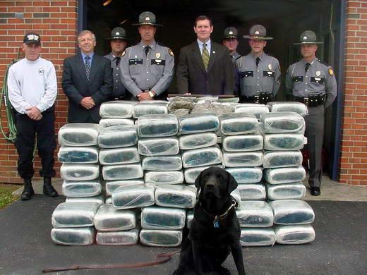 6 Negara Produksi Narkoba Terbesar Di Dunia [ www.BlogApaAja.com ]
