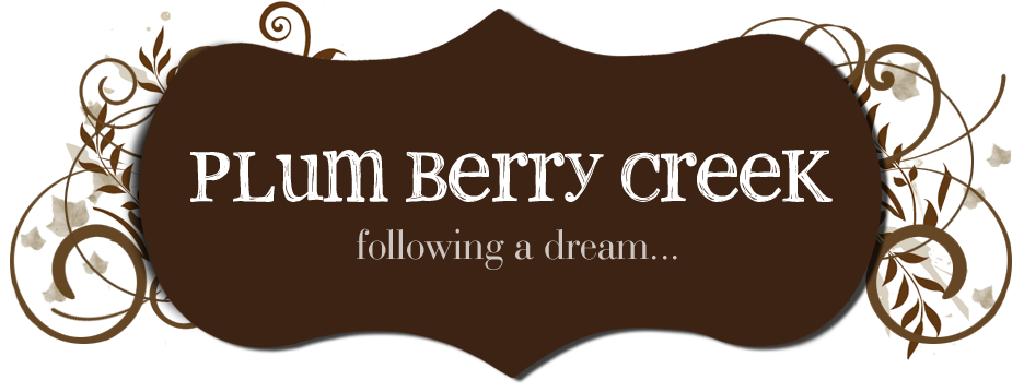 Plum Berry Creek