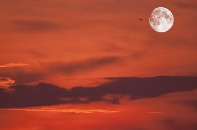 """Moon"" by Arvind Balaraman"