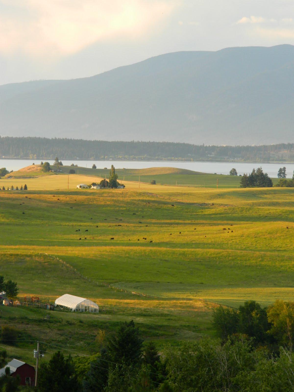 Dancing Cross The Country Flathead Lake Montana
