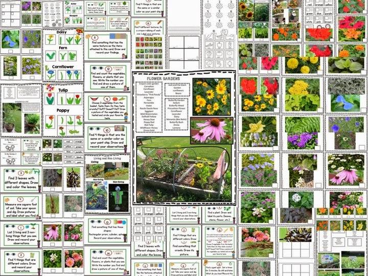 http://www.teacherspayteachers.com/Product/Garden-Discovery-Fun-In-the-Garden-or-the-Schoolyard-1326807