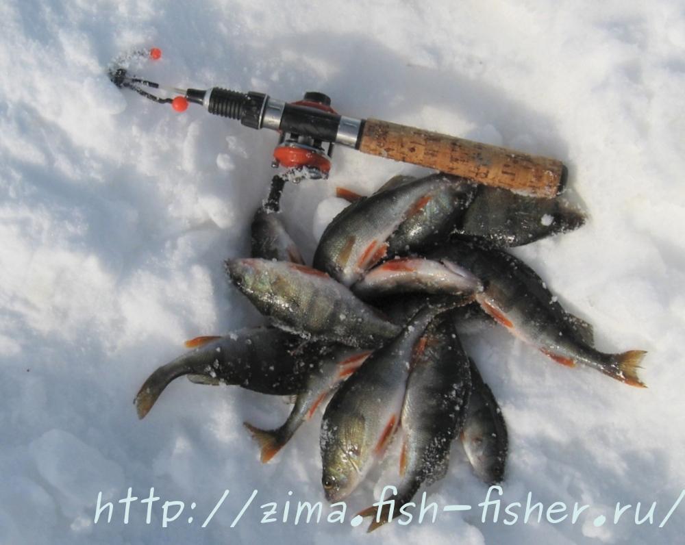 Самая лучшая зимняя рыбалка - рыбалка по последнему льду