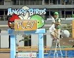 Permainan Angry Bird Versi Dunia Nyata