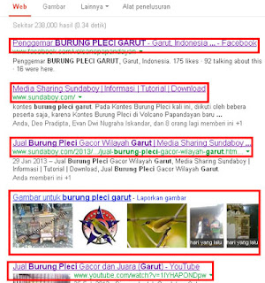Tips Agar Posisi Website Stabil Di Search Engine