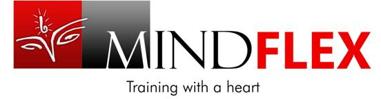 Mindflex- The Learning Orgainzation